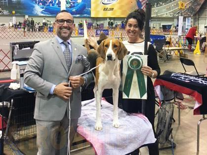 Potomac Dog Show  Results