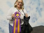 GCh. Chyscott's Rise From The Ashes