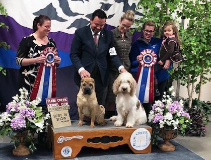 Plum Creek Kennel Club Dog Show