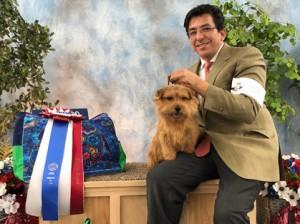 Denver Dog Kennel Rates