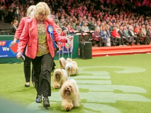 Trade Stands Crufts 2015 : Tickets go on sale for crufts u the world s biggest