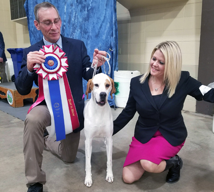 Dog Show In Garden City Ks