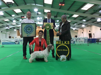 Top Dog Magic Mike From Wallingford Wins Another Huge Show