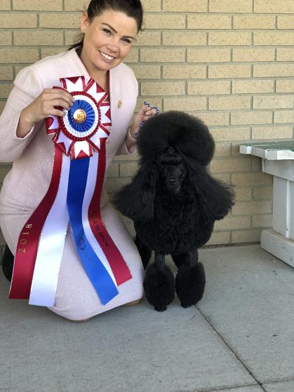 Fargo Moorhead Kennel Club Sunday June 3 2018 Canine
