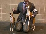 GCH Marchwind Sweet Victory