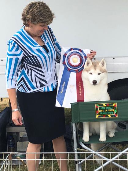Western Reserve Kennel Club Dog Show