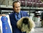 GCHB Silvergate Aslan Crown Healer Rafael