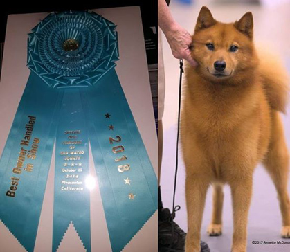 Dog Show Entry Results