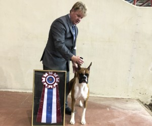 Tupelo Kennel Club – Thursday, October 4, 2018 | Canine Chronicle
