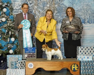 Kennesaw Kennel Club NOHS Results – Saturday, December 1 ...