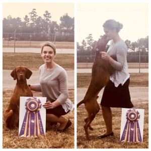 texas gulf coast vizsla club – friday, november 30, 2018