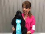 GCH Golden Gaits Over The Moon