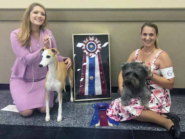 Mobile Kennel Club – Saturday, September 7, 2019   Canine