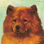 F CC-Chow Chow06. R.S. Moseley Ch. Windholmes Wan Lung 1897