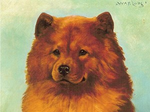 Chow History Canine Chronicle