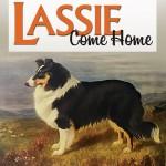 F connor-lassie_bkg