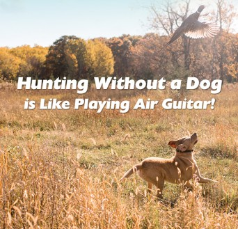 F Hunting without a dog