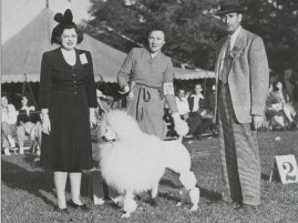 Alva Rosbenberg in September, 1944, at age 52, awarding the Non-Sporting Group at the Interstate Kennel Association to Mrs. Sherman R. Hoyt of the legendary Blakeen Poodles for one of her white Standard stars. Club President, Anna Katherine Nicholas looks on.