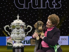 2020 Crufts Best in Show - Maisie with Kim Mccalmont, Credit Flick Digital