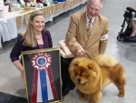 GCh.-Dreamlands-Thrill-of-The-Chase