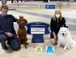 Fayetteville Kennel Club NOHS Results