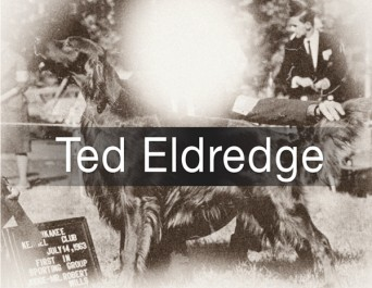 F Ted Eldredge
