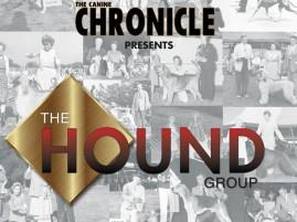 F Hound Group