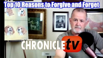 Top 10 reasons to forgive and forget