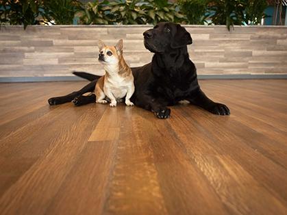 Hardwood Flooring Manufacturer Nydree Provides