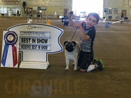 Myrtle Beach Kennel Club Sunday April 30 2017 Show Name